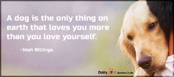 A Dog Is The Only Thing On Earth That Loves You More Than You Love