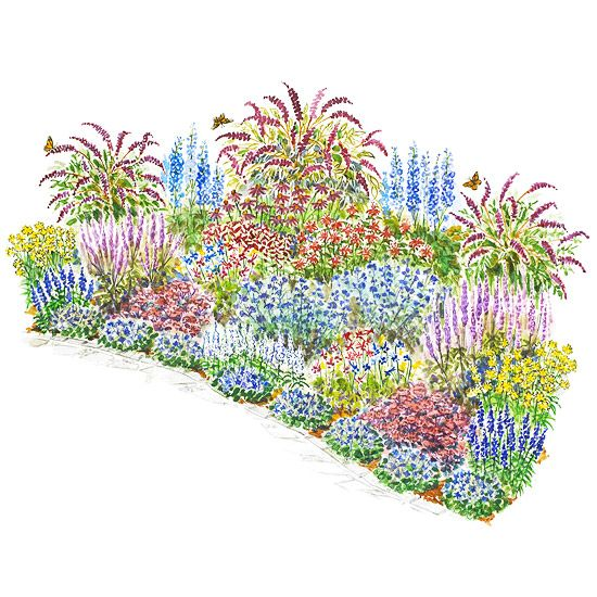 This large garden plan is perfect for birds and butterflies! Get ...