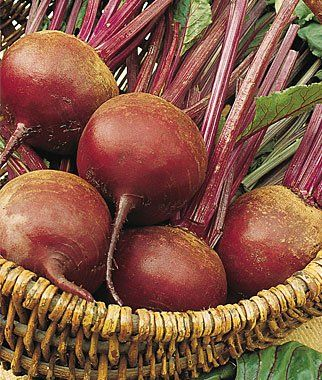 10 Great Vegetables to Grow In Fall
