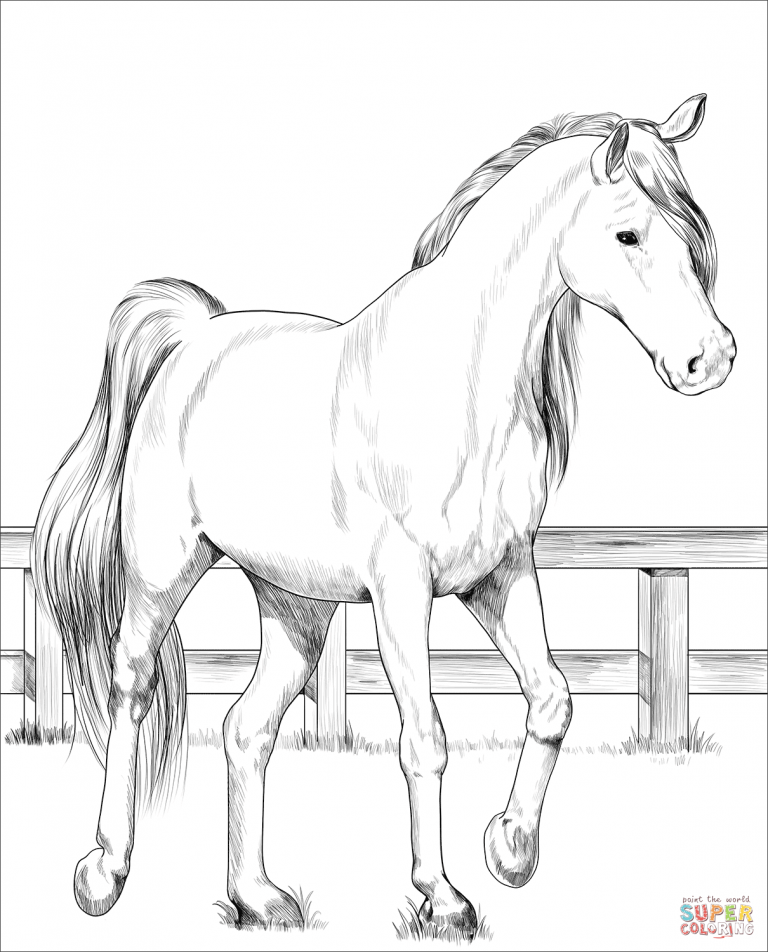 Trakehner Horse Coloring Page - Free Printable Coloring ...