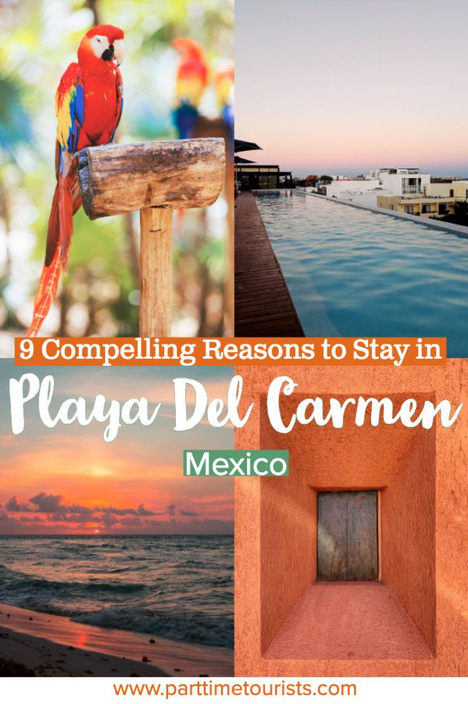 9 Compelling Reasons To Stay In Playa Del Carmen While In