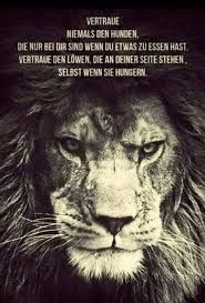 Image Result For Tiger Sprüche Lion Quotes Lion Quotes