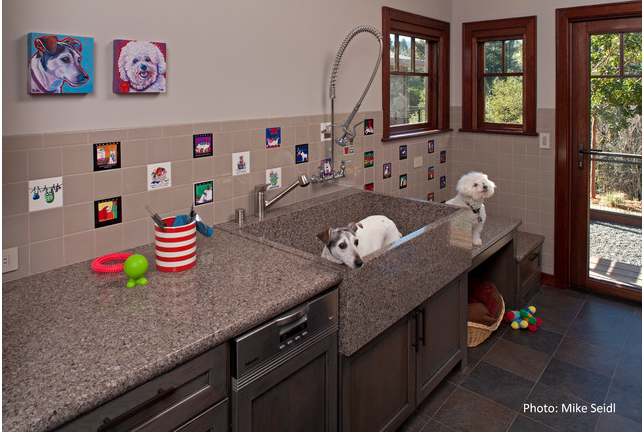 Awesome Custom Dog Washing Station Note The Stairs Counters For Larger Dogs Nice Custom Granite Dog Mudroom Dog Room Dog Washing Station Dog Grooming Tubs
