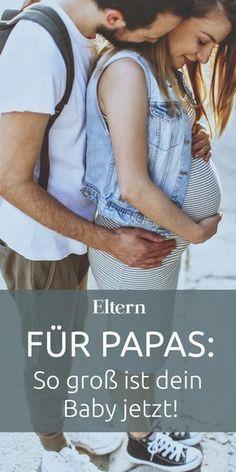Gummibärchen In Der Schwangerschaft