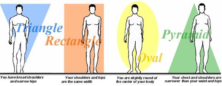 Shape masculine body Learn the