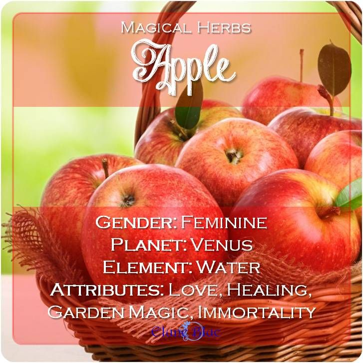 The Fruit of the Gods: Apple Magical Properties and Uses -- Magical Herbs