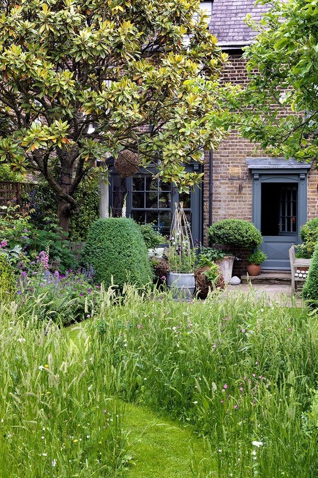 Butter Wakefield's London garden is part of Outdoor garden Spaces - Garden designer Butter Wakefield's flourishing slice of the countryside in the city  outdoor spaces on HOUSE by House & Garden