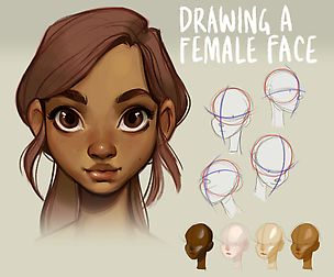 Tutorial Drawing A Female Face Female Face Drawing Human Face Drawing Drawing Tutorial Face