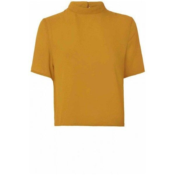Mustard High Neck T Shirt ($26) ❤ liked on Polyvore featuring tops, t-shirts, mustard t shirt, sleeve t shirt, reversible t shirts, brown t shirt and brown tops