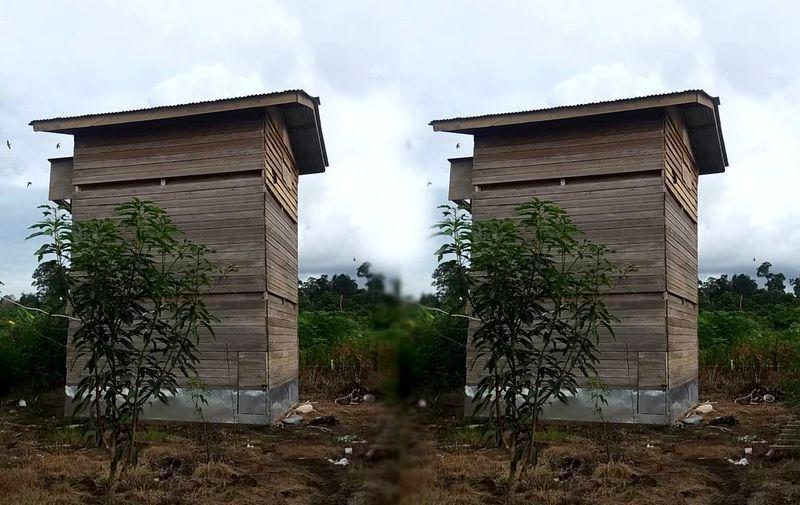 Desain Rumah Walet Kecil Dari Kayu Rumah Burung Burung Walet Rumah