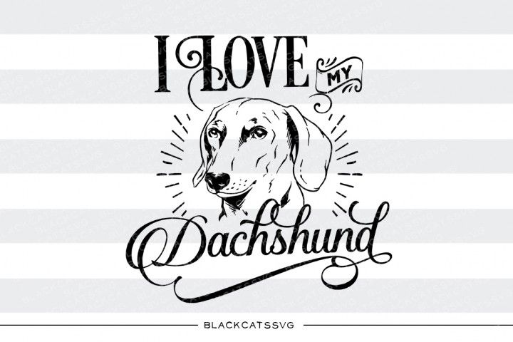 814+ Dachshunds In Love Svg by Designbunle