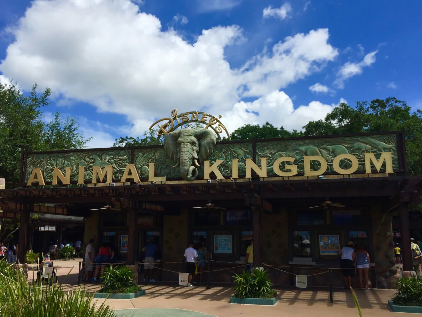 Oped Three Reasons Why Animal Kingdom Is The Best Disney