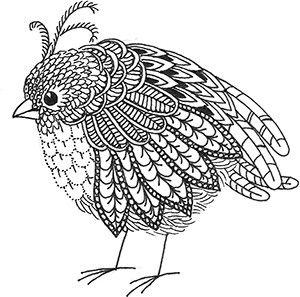 Doodle Bird Fig15 Bird Drawings Drawings Zen Doodle
