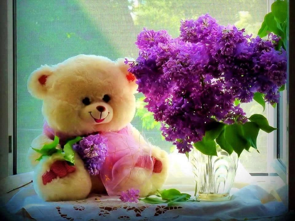 Happy Teddy Bear Day Bears For Valentines Hey Guys Today Is And We Wish You A Very