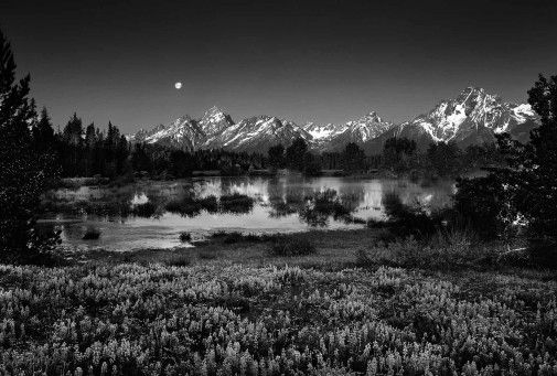 Photographs Clyde Butcher Black White Fine Art Photography Fine Art Landscape Photography Fine Art Landscape Landscape Photography