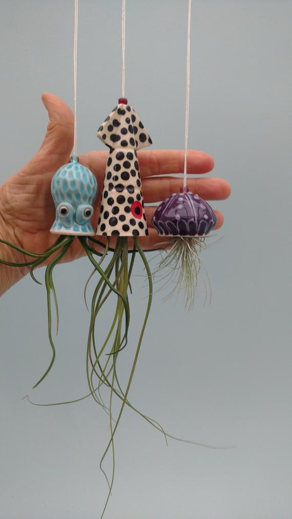 Christmas In Octopus Garden >> Mini Octopus Garden Set Hanging Planters Collection Of 3 Squid