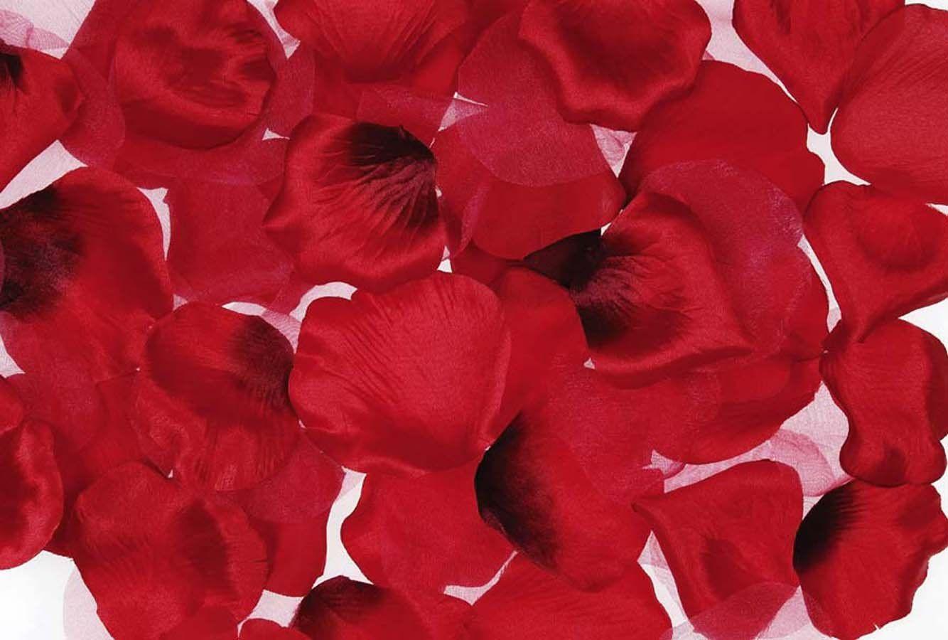 300 ARTIFICAL SILK ROSE PETALS WEDDING FLOWERS RED NEW