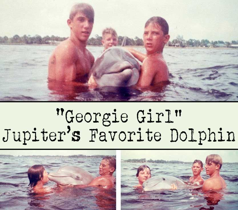 Girl Jupiter's Favorite Dolphin Jupiter