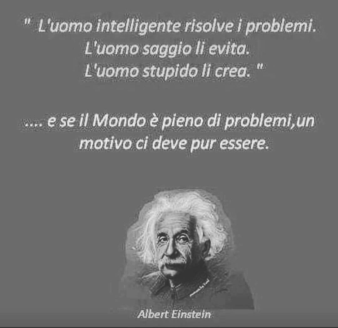 The Intelligent Man Solves The Problems The Wise Man Avoids Them