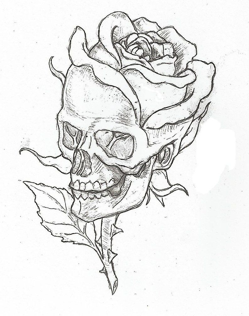 Simple Skulls And Roses Drawings Sketch Coloring Page Skull Art Roses Drawing Art Drawings Sketches