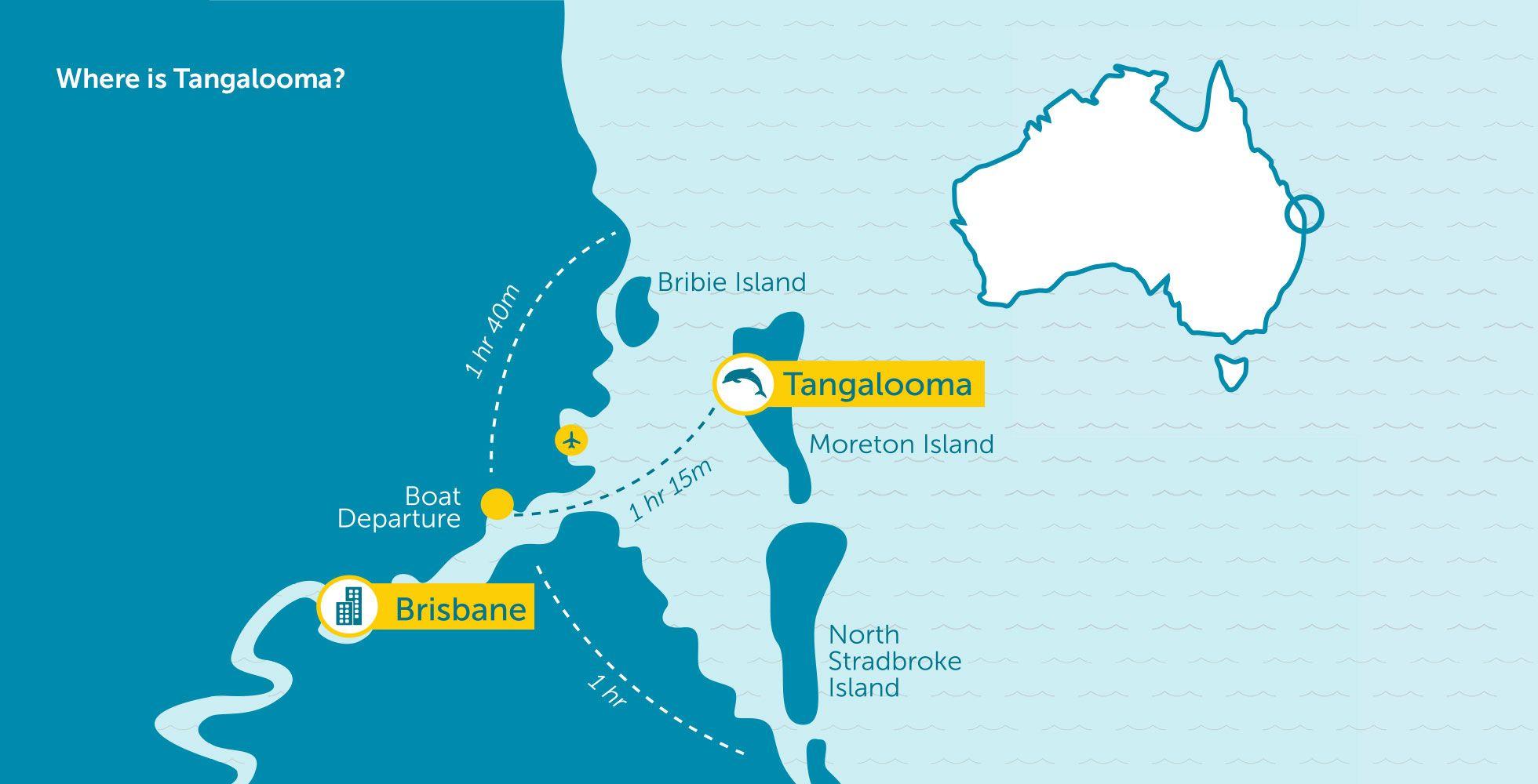 Tangalooma Island Resort - Feed Wild Dolphins on Moreton Island