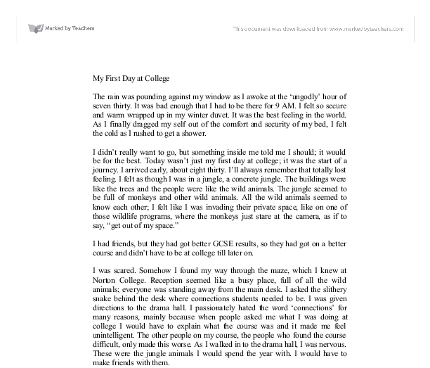 000 Document image preview art School essay, College essay