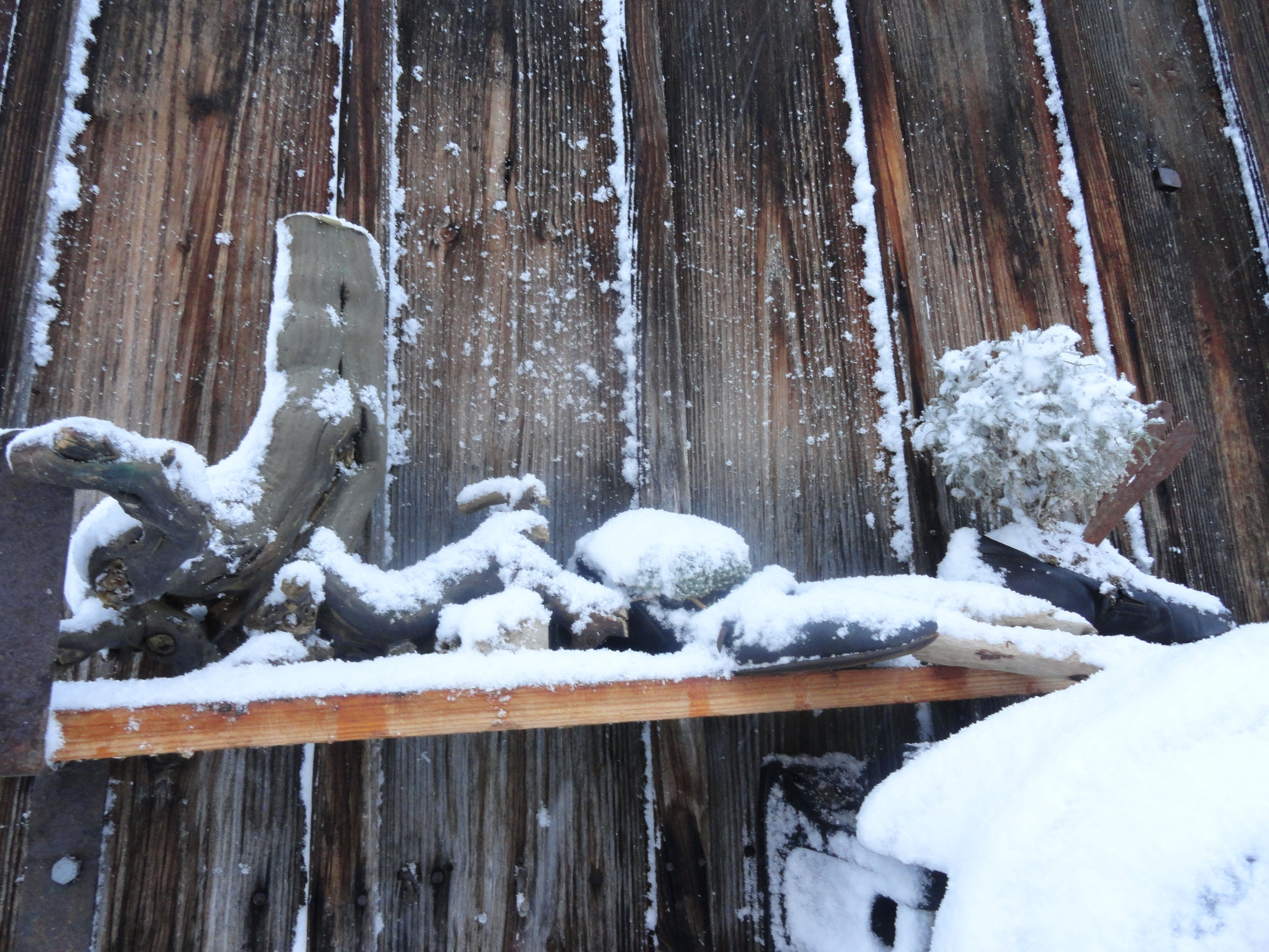 Die alten Lieblingsschuhe dürfen jetzt die Winterlandschaft genießen.