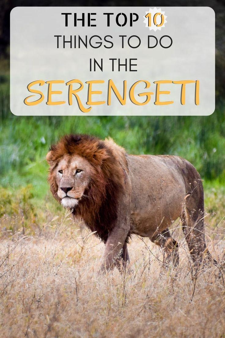 Tips for Visiting the Serengeti, Tanzania