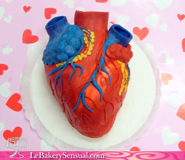 Swell Human Heart Cake Oh Muh Goodness I Want This When I Graduate Personalised Birthday Cards Petedlily Jamesorg