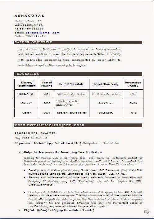 examples of cvs for jobs Sample Template Example ofExcellent - indian resume format