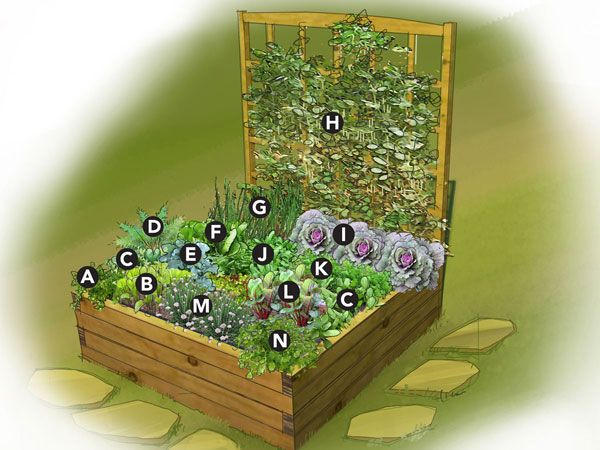 Small space garden. 4\'x4\' raised bed Plant List A) Parsley B ...