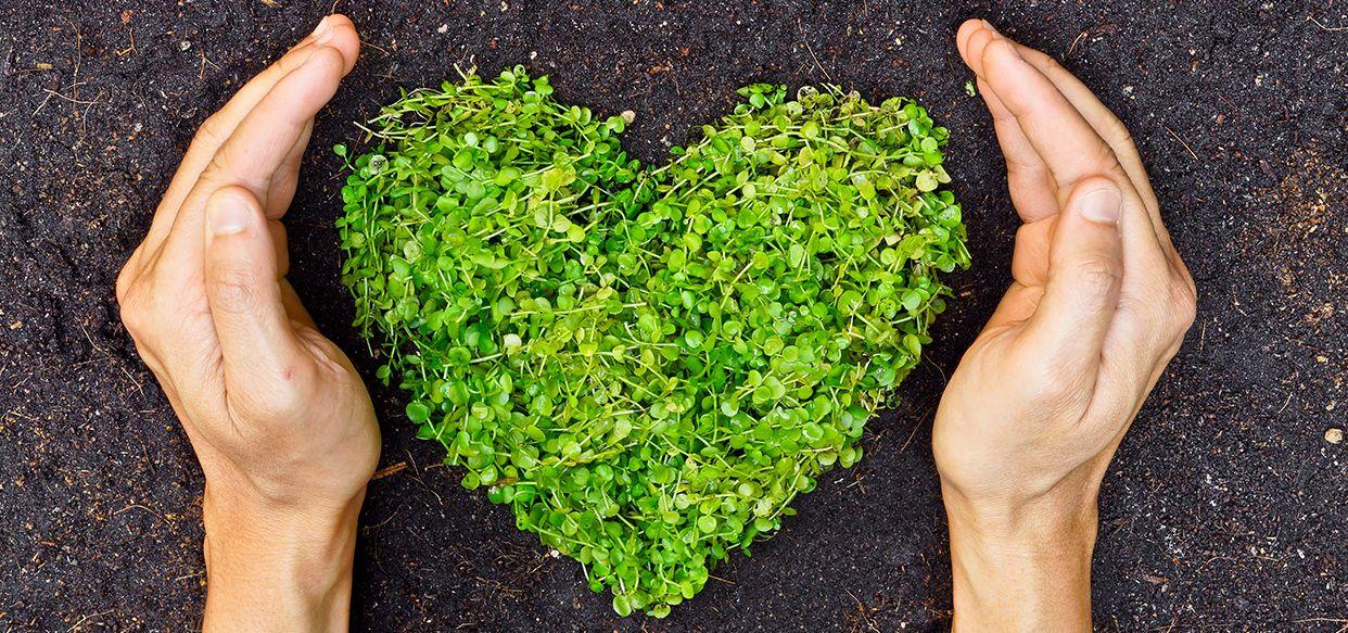Blumen für alle: die 6 schönsten Urban-Gardening-Projekte  Ihr habt einen grünen Daumen, aber euch fehlt der Garten, um ihn auszuleben? Kein Problem. In vielen Großstädten könnt ihr beim Urban-Gardening pflanzen und ernten. Unsere liebsten Gartenprojekte.