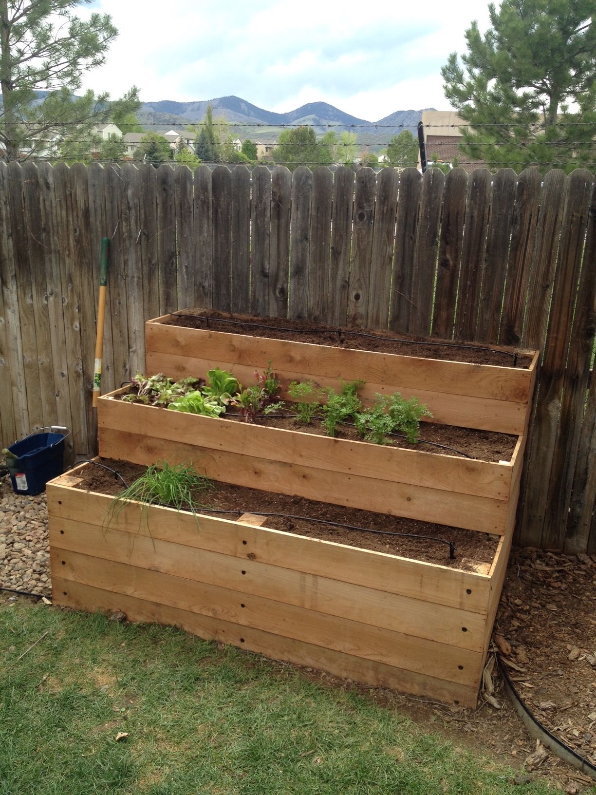 Cedar Raised Garden Beds 3 Tiers Do It Yourself Home
