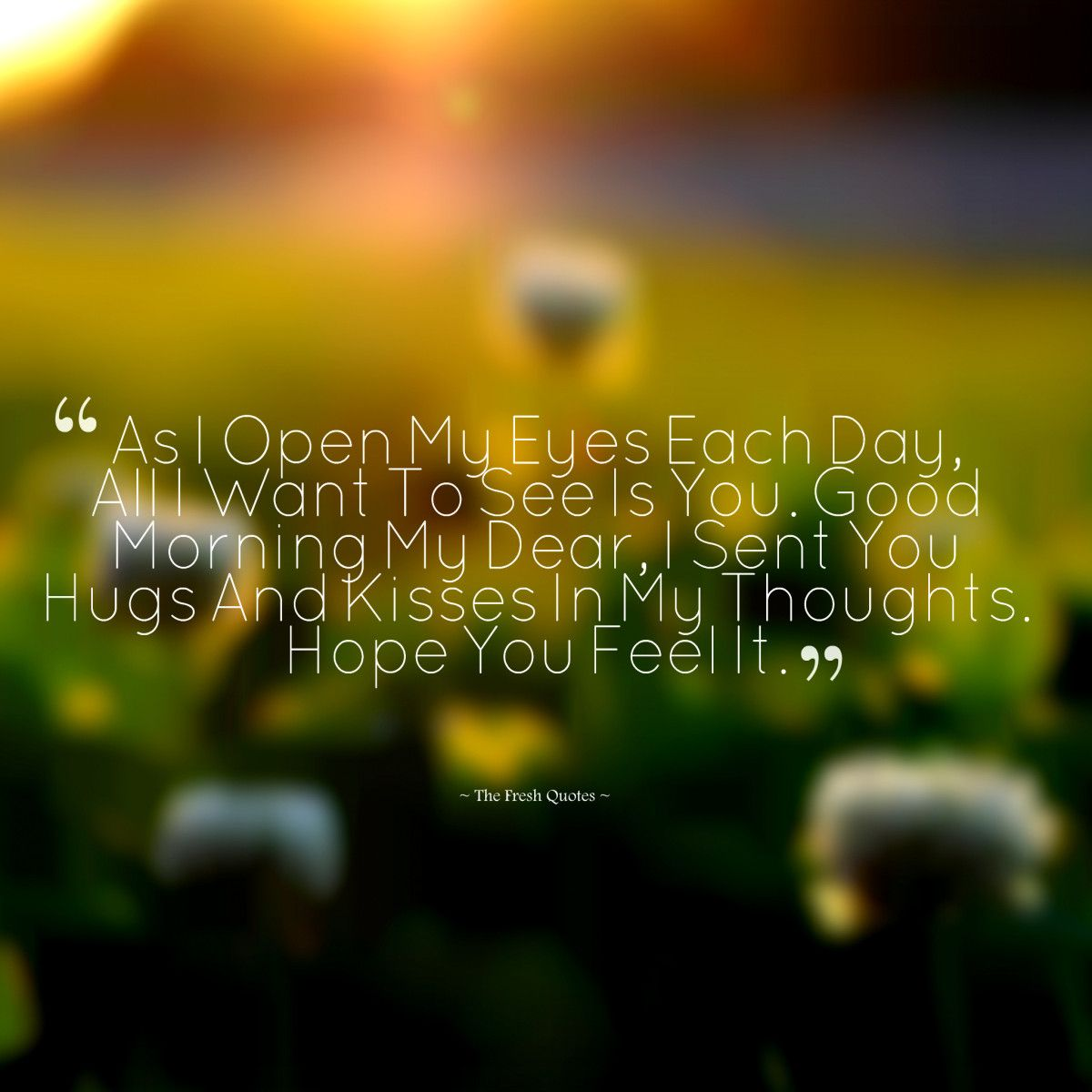 Cute Romantic Good Morning Wishes Images Quotes Pinterest