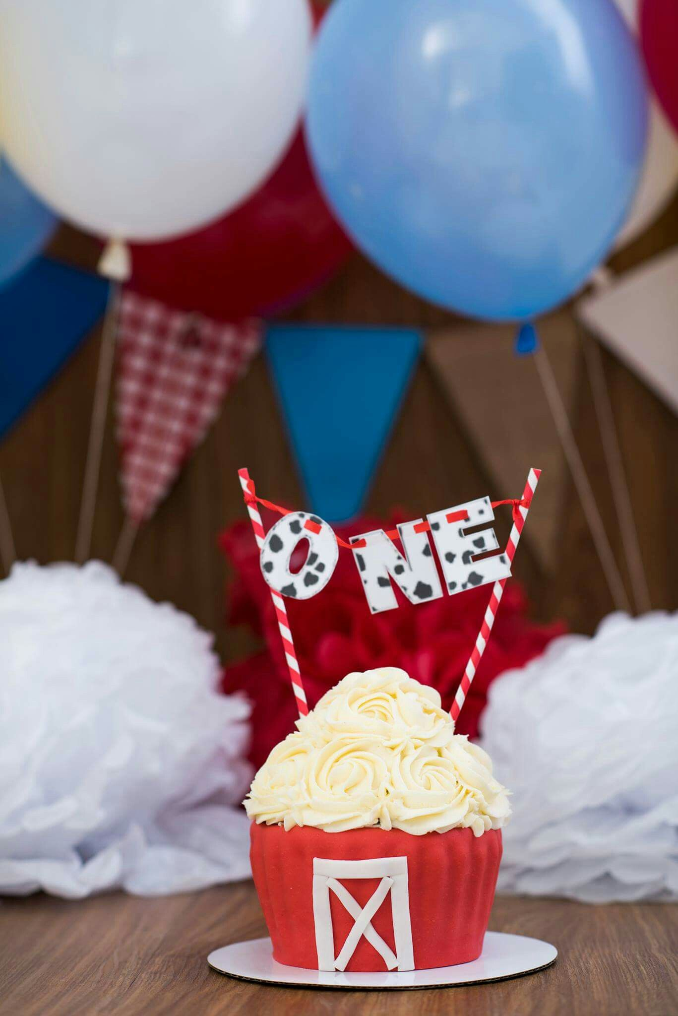 Barnyard theme smash cake photography Smash cake first
