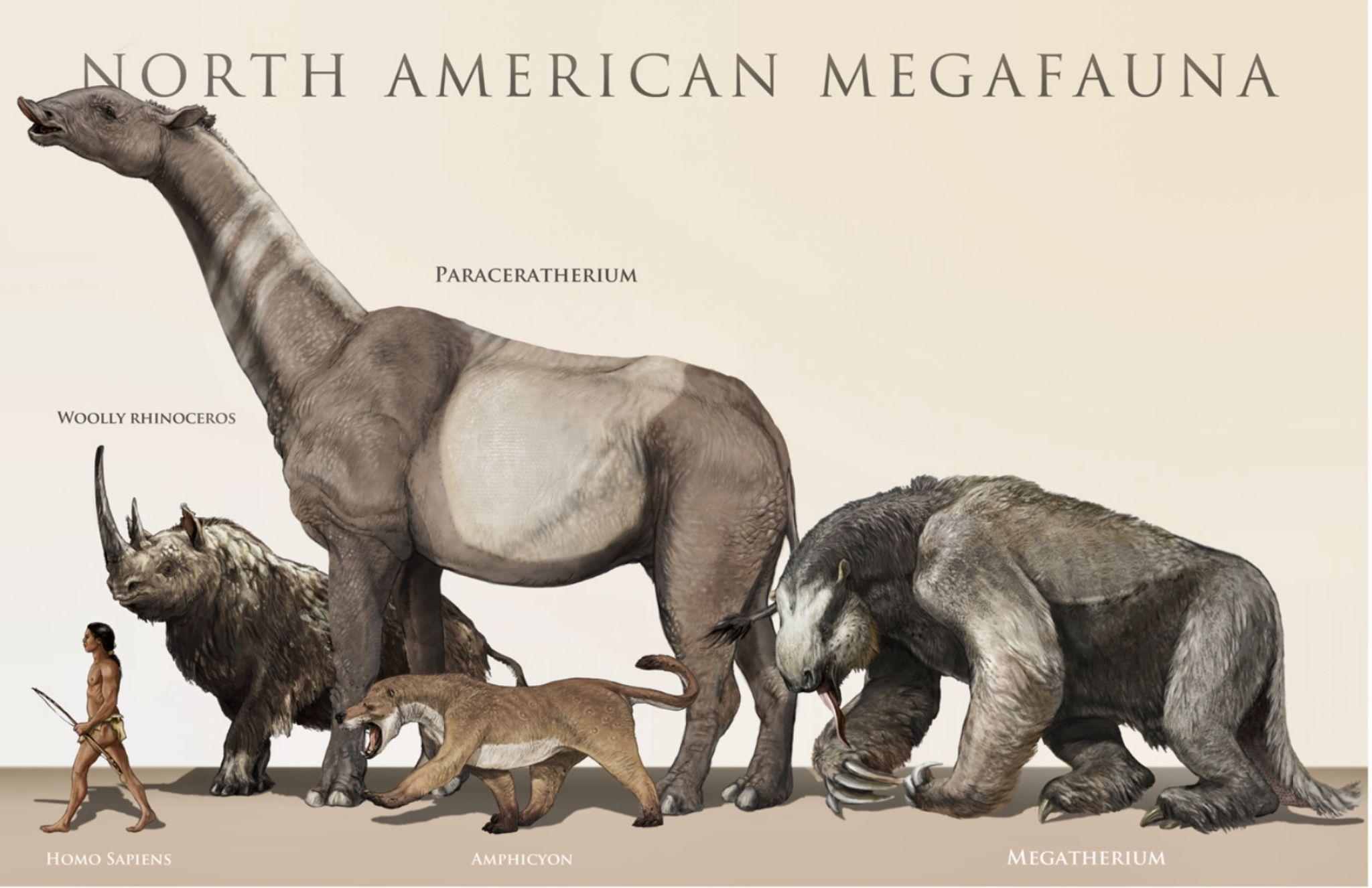 giant animals north america - HD1500×1000