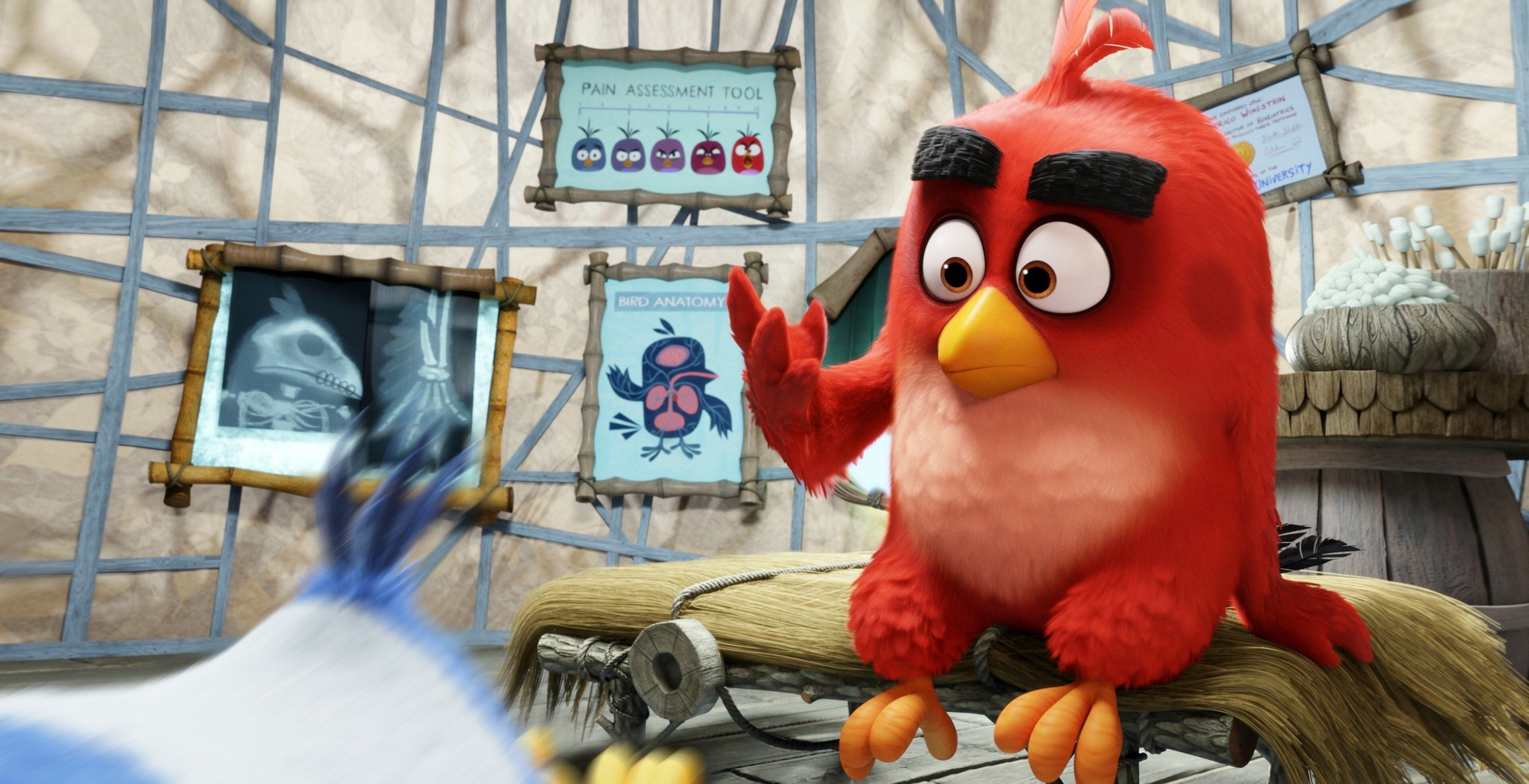 3800x1949 Angry Birds Movie 4k Free Download Beautiful Wallpaper For Desktop