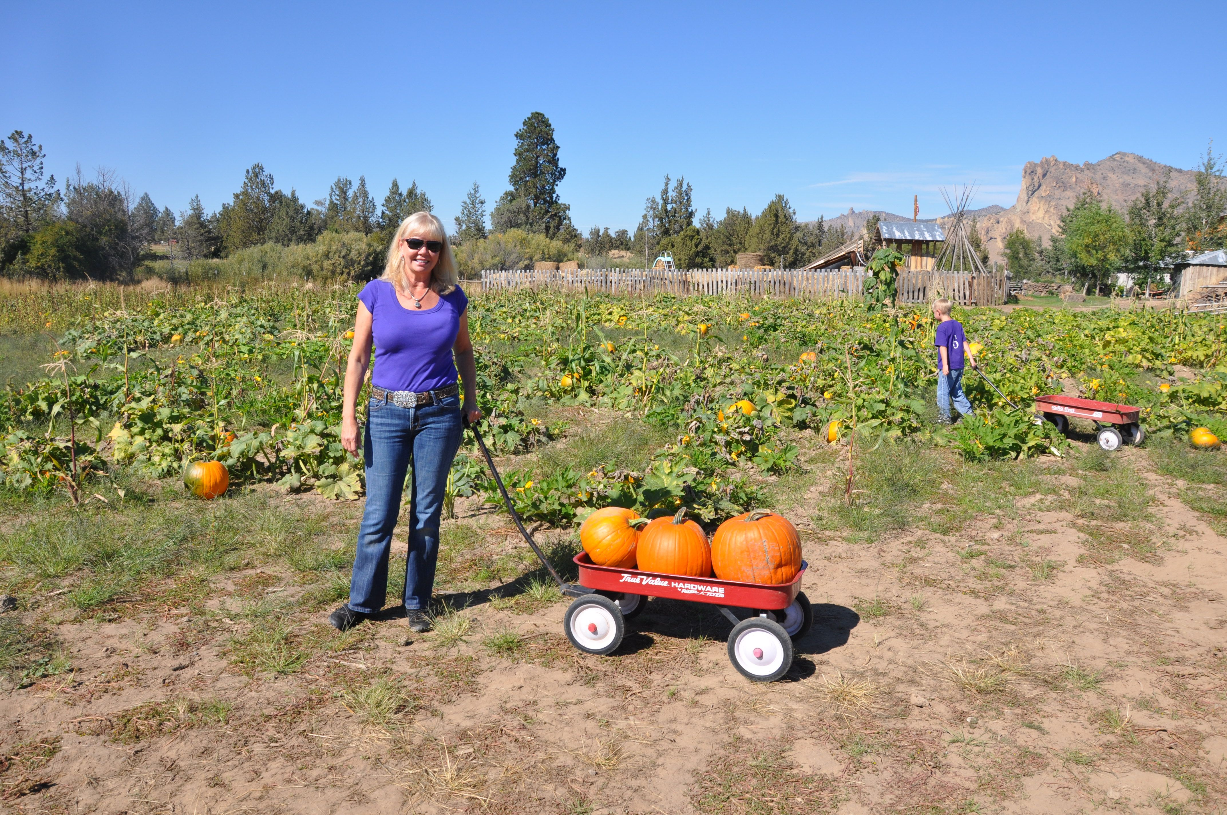 Chef Bette In The Pumpkin Patch At D.D. Ranch