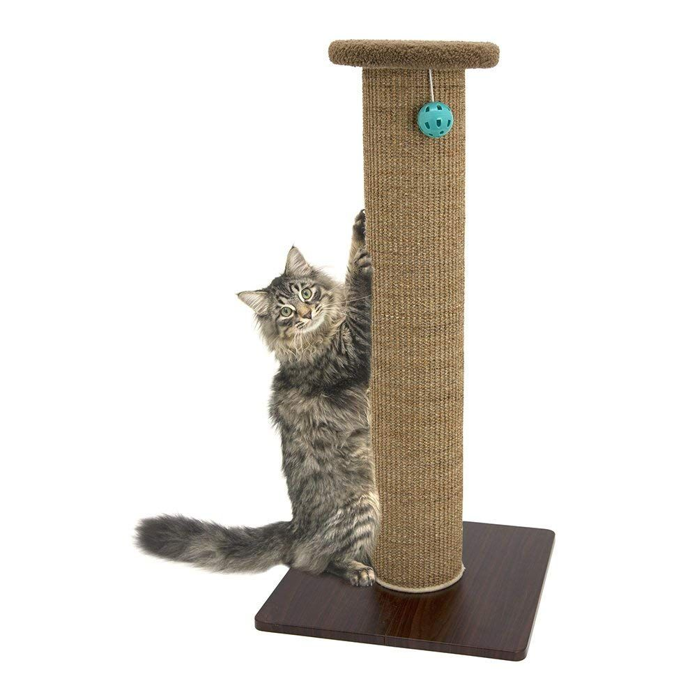 Amazon Com Kitty City Premium Woven Sisal Carpet Scratching Post Fleece Bed Furniture Total Height 32 Cat Post Cat Scratching Furniture Cat Scratching Post