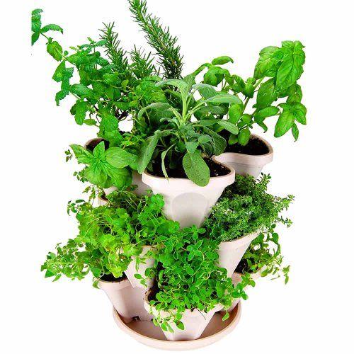 Mini-Garden Stacker- Stackable/Hangable All Season Self-Watering ...