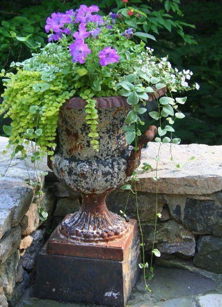 Urning Desire Plants Garden Urns Garden Containers