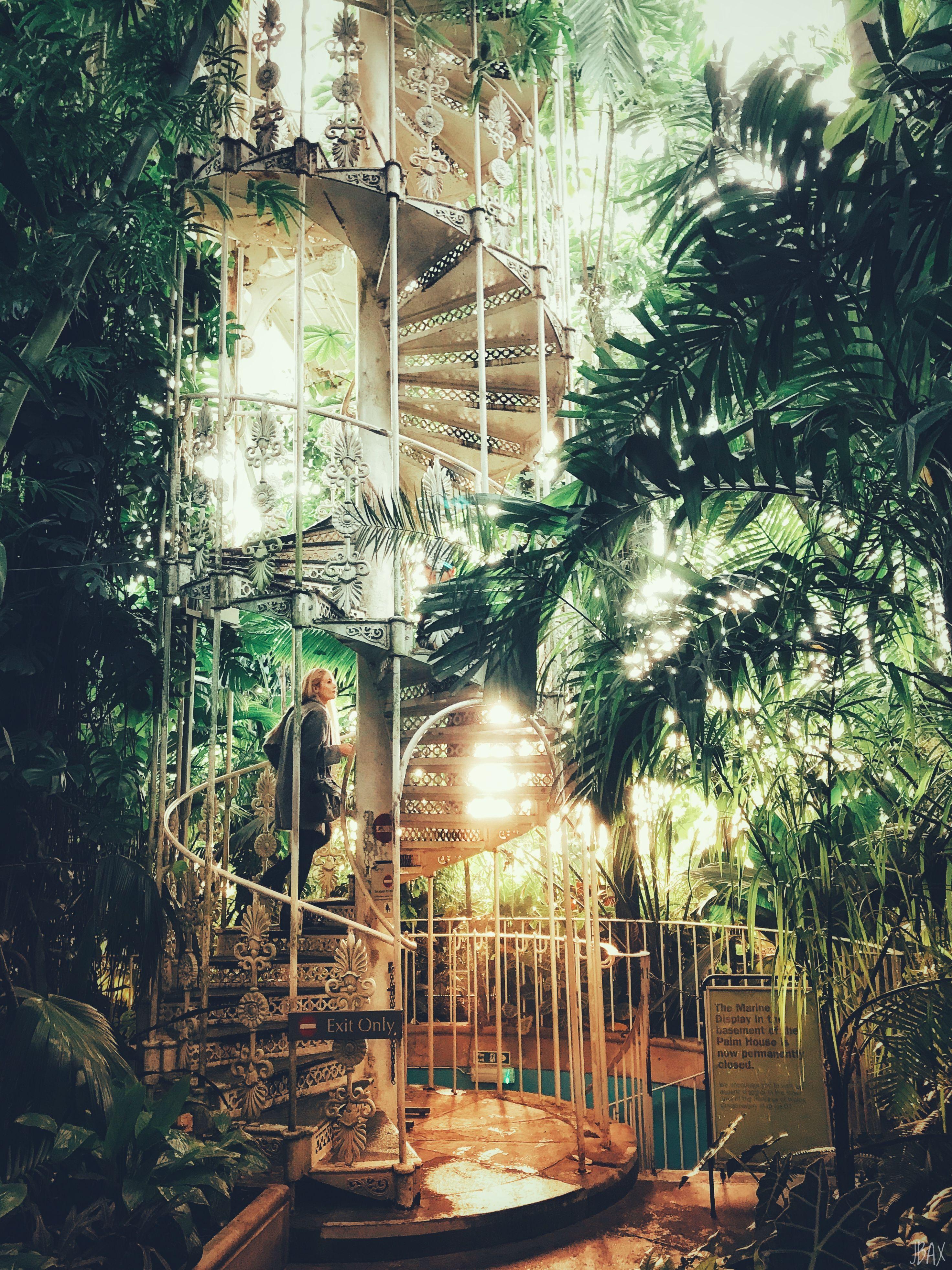 853fa187147af6cd2c2b905ec12171c9 - Palm House Kew Gardens London England