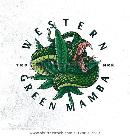 Pin On Cannabis Craft