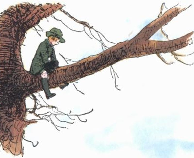 Christopher Robin On The Branches Of A Big Oak Tree Winnie The