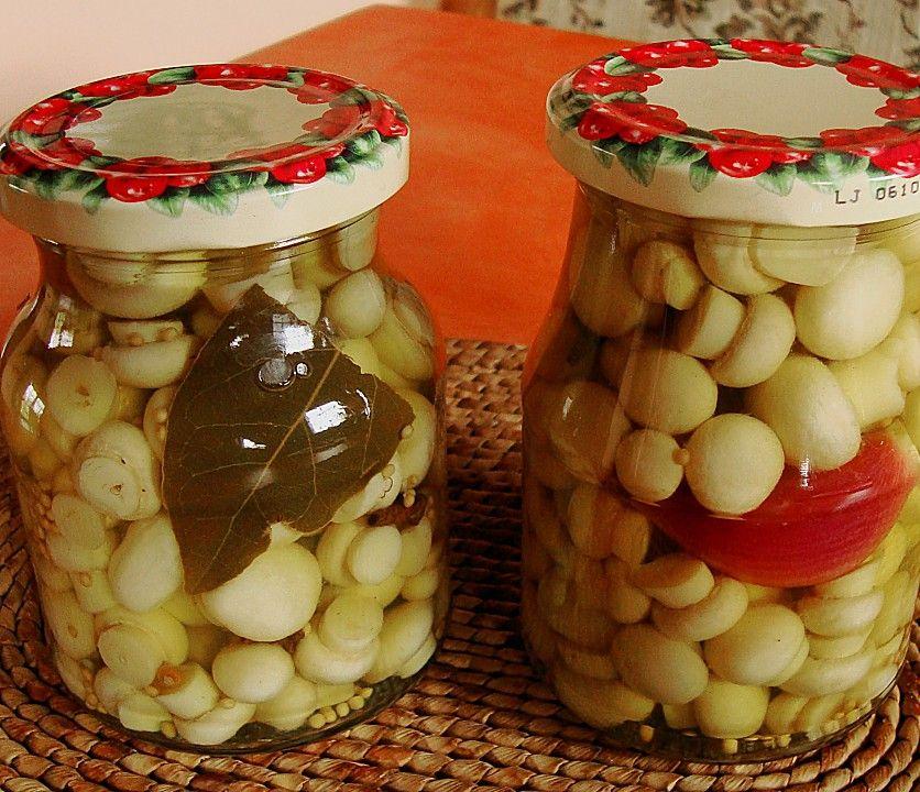 Einmachen pilze Rezept Das