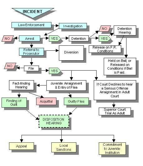 System Overview Whatcom County Wa Official Website Criminal Psychology Criminal Justice System Criminal Justice