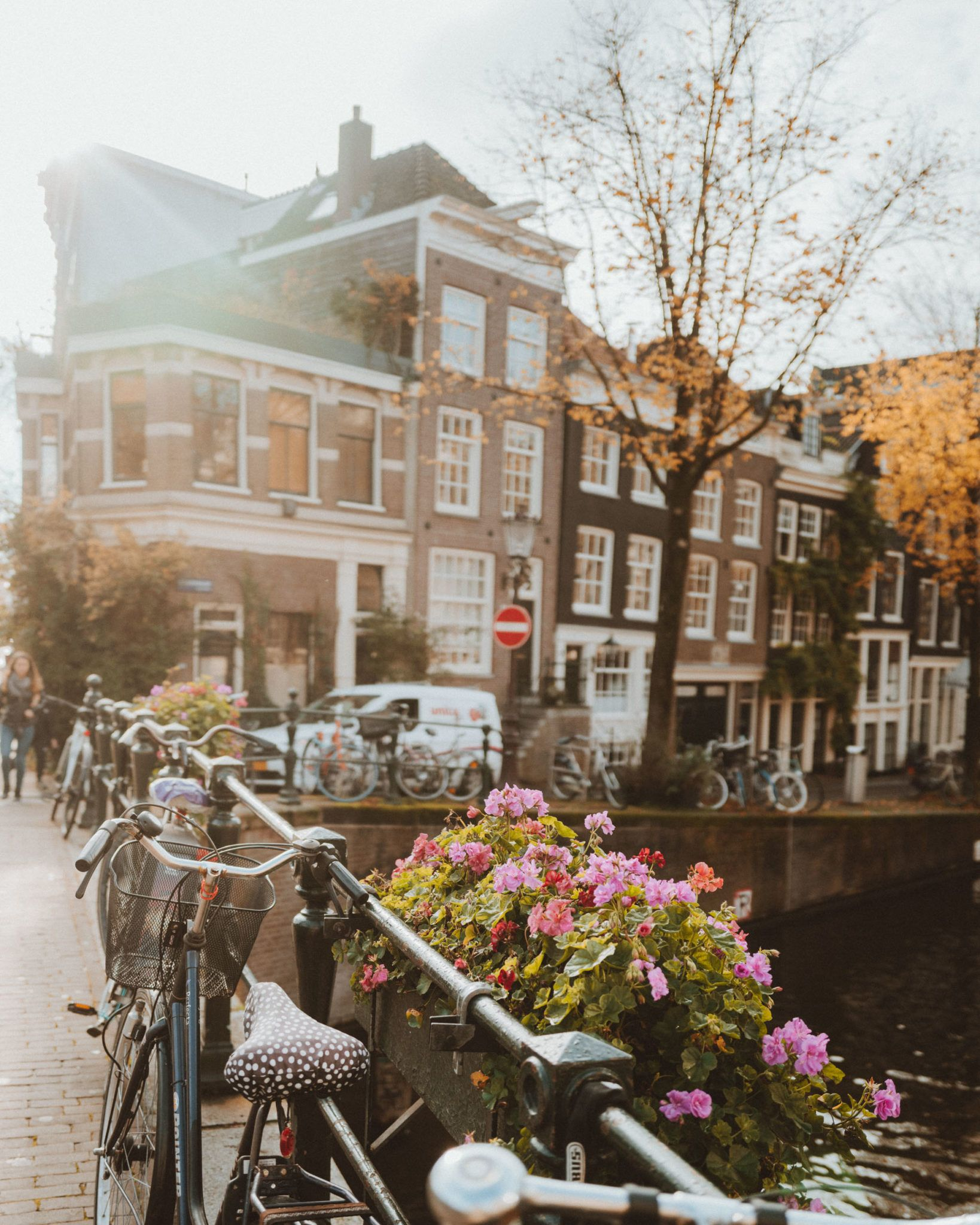 Our Favorite Restaurants in Amsterdam - Find Us Lost