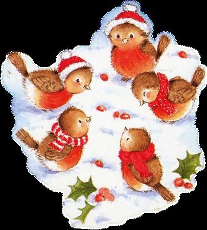 Cartão De Natal Francês Com Pintarroxos Com Roupinhas De
