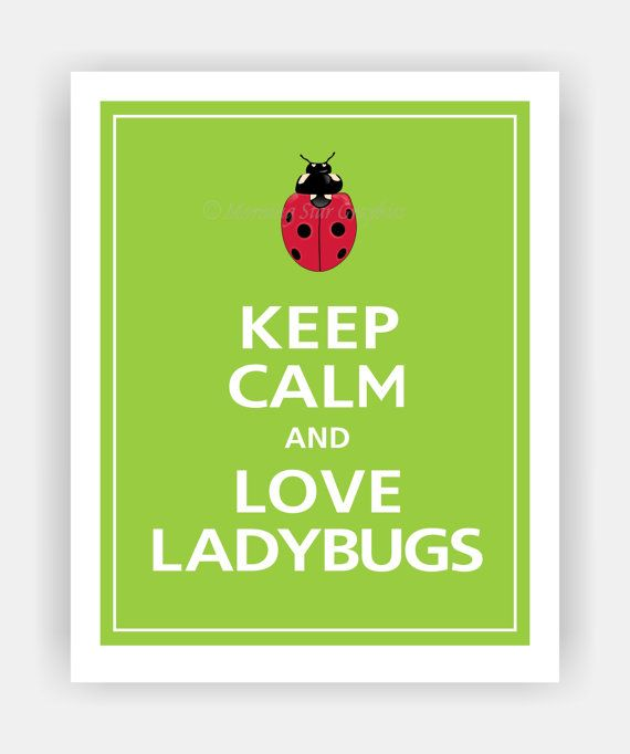 Keep Calm and LOVE LADYBUGS Print 8x10 (Sour Apple featured--56 colors to choose from) on Etsy, $10.95