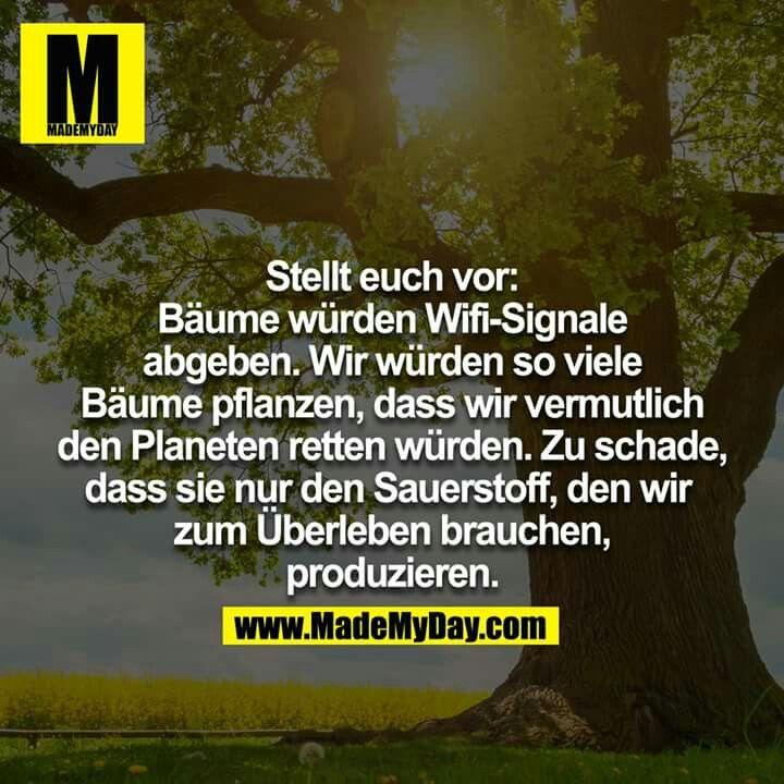 Umweltschutz | Изучение немецкого языка | Citation und Philosophie